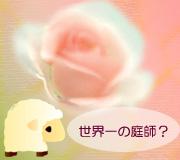 hitsuji_A-LITTLE-CHAOS.jpg