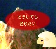 hitsuji_MERU.jpg