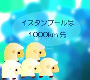 hitsuji_MUSTANG.jpg