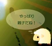 hitsuji_NEBRASKA.jpg