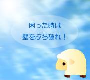 hitsuji_TINTIN.jpg