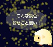 hitsuji_arlo.jpg