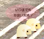 hitsuji_setoutsumi.jpg
