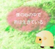 hitsuji_kimisui.jpg