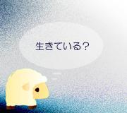 hitsuji_kitanocanaria.jpg