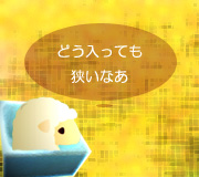 hitsuji_umiyorimo.jpg