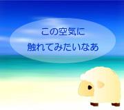 hitsuji_watashinohawaii.jpg